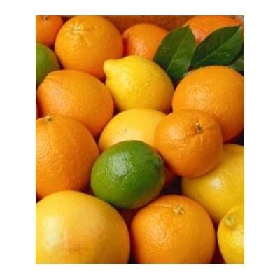 Oranges-Citrons-Pamplemousses
