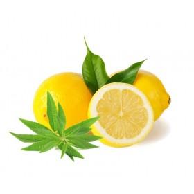Citrons Verveine