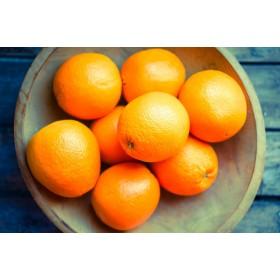 Oranges amères BIO